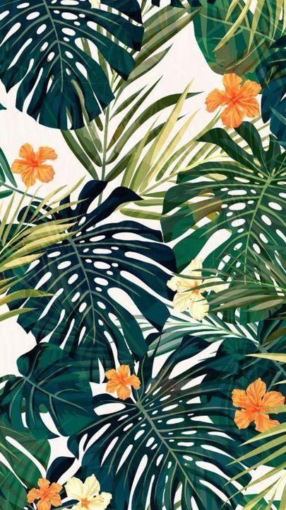 Galeri Vector Gambar Mentahan Background Daun Wallpaper Tropis Ilustrasi Daun Wallpaper Seni