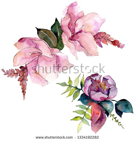 Stock Photo Bouquet Composition Floral Botanical Flowers Wild