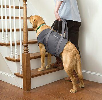 Dog Lift Dog Sling Dog Ramp Dog Ramp For Stairs