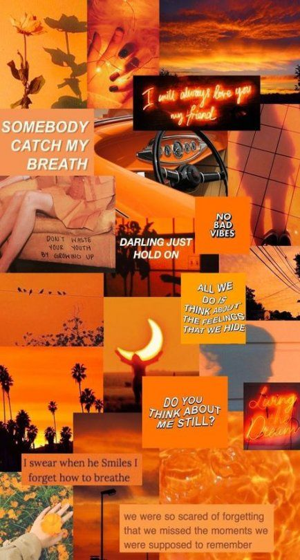 67 Best Ideas Orange Aesthetic Wallpaper Collage Wallpaper In