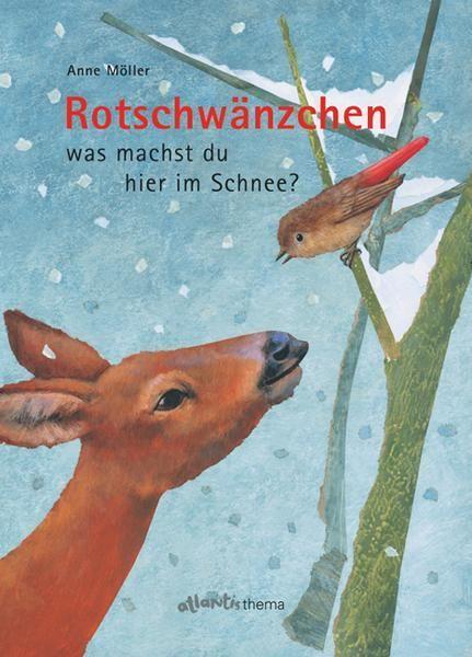Photo of Rotschwänzchen – was machst du hier im Schnee?