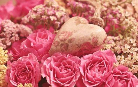 Wallpaper Bunga Mawar Love Di 2020 Bunga Wallpaper Bunga Mawar