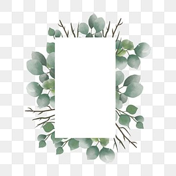 Eucalyptus Leaf Frame Watercolor Eucalyptus Clipart Background Frame Png And Vector With Transparent Background For Free Download Flower Clipart Rose Clipart Leaf Clipart