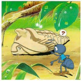 Cerita Bergambar Contoh Gambar Ilustrasi Kelinci 17 Cerita Fabel Hewan Pendek Cerita Dongeng Anak Sebelum Tidur Cerita Ilustrasi Gambar Kelinci Binatang
