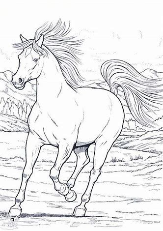 Image Result For Horse Coloring Pages Wild Horse Coloring Horse Coloring Pages Animal Coloring Pages