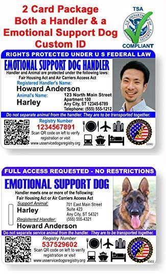 Just 4 Paws Custom Holographic Qr Code Emotional Support Dog Id Card With Registration To Service Dogs Registry Emotional Support Dog Dog Id Emotional Support