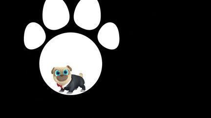 Watch Puppy Dog Pals Tv Show Disney Junior On Disneynow Disney Junior Puppies Dogs And Puppies