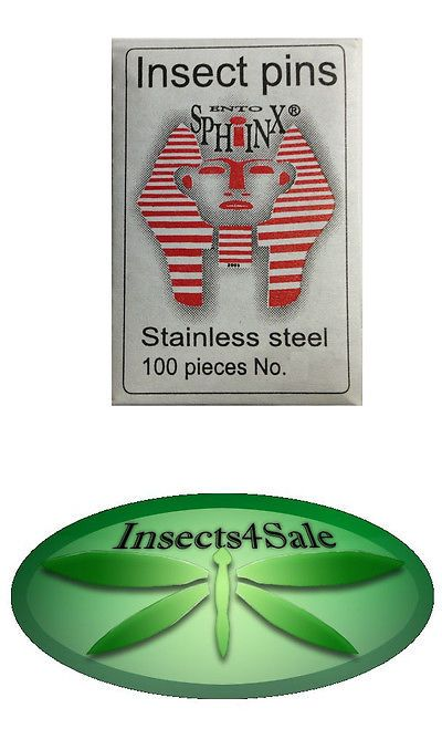 Insects And Bug Habitats 158699 Stainless Steel Insect Mounting Pins Size 3 Buy It Now Only 10 6 On Ebay Insects Hab Stainless Steel Insects Stainless