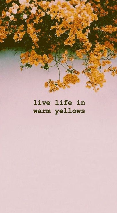 Warm Yellow Flower Quotes Cute Quotes For Instagram Instagram Quotes