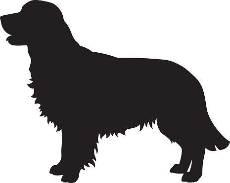 Vector Silhouette Golden Retriever Dog Golden Retriever Silhouette Golden Retriever Illustration Dog Silhouette