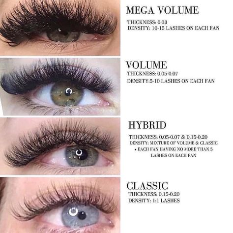 There are many kinds of eye beauty, the one you like is the best . by Eyelashes Company Types Of Eyelash Extensions, Volume Lash Extensions, Feuille D'or Rose, Wispy Lashes, Types Of Eyes, Natural Lashes, Natural Makeup, Longer Eyelashes, Makeup Tips