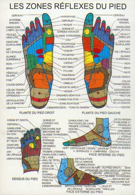 Réflexologie de la main et du pied   Chenmen