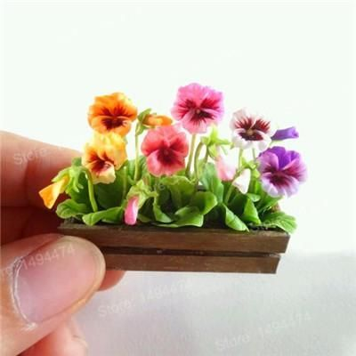 200pcs Mixed Color Rare Mini Pansy Seeds Wavy Viola Tricolor Flower Seeds Bright Beautiful Folwer Mini Bonsa Polymer Clay Flowers Clay Flowers Handmade Flowers