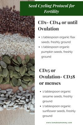 Seed Cycling for Fertility: How I used seeds to get pregnant after