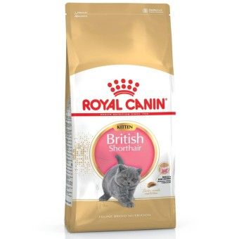 Review Royal Canin British Shorthair Kitten 2kgorder In Good