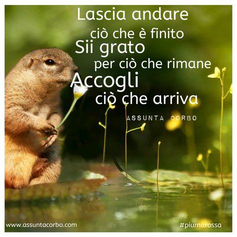 Il passato ti ha detto tutto, lascialo andare. Il presente ha nuovi doni per te...apri le braccia. Scegli di vivere grato e felice.  #piumarossa #citazioni   www.assuntacorbo.com