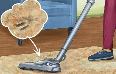 How To Get Rid Of Bad Smell In Vacuum Cleaner In 2020 Vacuum Cleaner Vacuum For Hardwood Floors Vacuum Cleaner Reviews