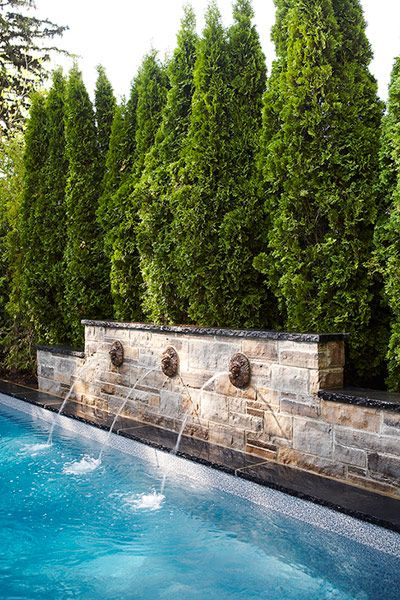 Pool Privacy Ideas fountains into pool, stone wall, evergreens | best stuff | garden