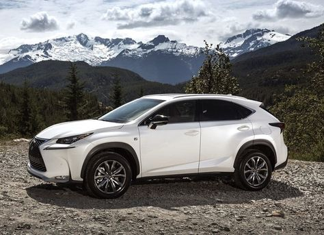 Lexus 2015 Suv >> All New Suv Hits The Market The 2015 Lexus Nx And Nx F