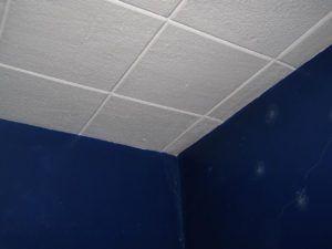 Polystyrene Ceiling Tiles Asbestos Http Sadwaters Us