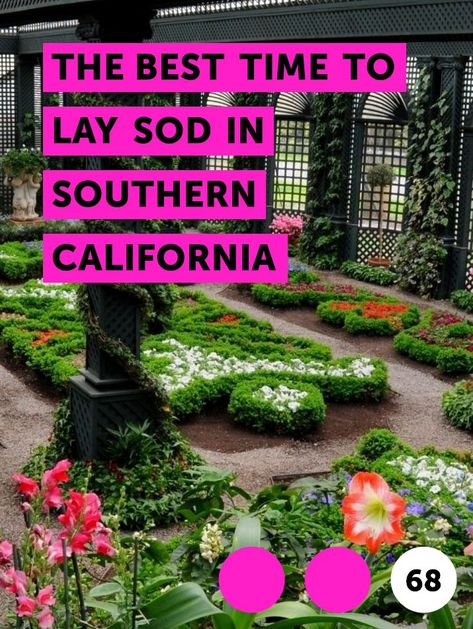 The Best Time To Lay Sod In Southern California Plants Growing Grass Lawn