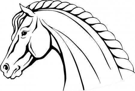 Cabeza De Caballo Ilustracion Vectorial Aislada Dibujada A Mano Armeria Ilustracion De Stock Como Dibujar Un Caballo Cabeza De Caballo Como Dibujar Cosas