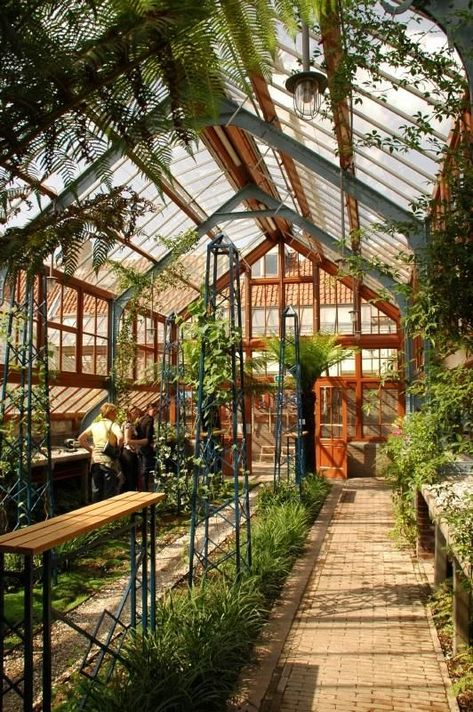 How to make the small greenhouse? There are some tempting seven basic steps to make the small greenhouse to beautify your garden. Stardew Valley Greenhouse, Best Greenhouse, Outdoor Greenhouse, Greenhouse Gardening, Outdoor Gardens, Greenhouse Ideas, Portable Greenhouse, Utrecht, Greenhouse Interiors