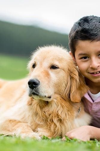 The Very Best Kid Friendly Dog Breeds For Your Growing Family