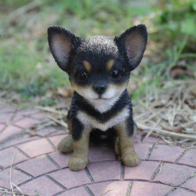 Hi Line Gift Garden Statue 87771 Chihuahua Puppy Statue