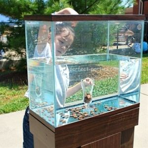 Penny Drop  Inexpensive game using a fish tank, jar, water and pennies! Great for an ocean theme party or an outdoor party with carnival style games.   MATERIALS - Aquarium, Small glass vase or jar, Water, Pennies  INSTRUCTIONS - Fill tank with water.  Place jar in tank.   Drop pennies and if it goes into the jar, it's a winner.   TIPS - Weigh down jar with pennies if needed.