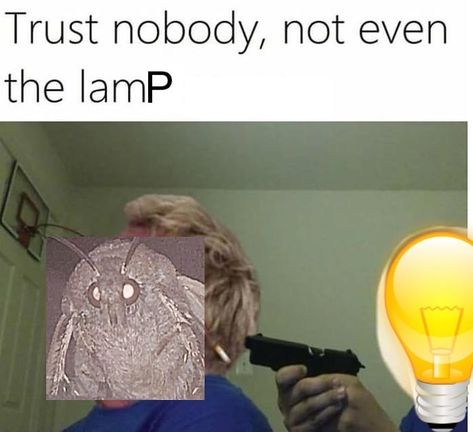 Omg Lamp Would Never Do That Im Literally Crying And Shaking Rn