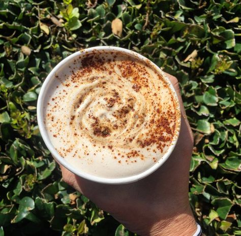 Caffeine Please Relishing Nutrition Sweet Pumpkin Coffee Shop Chai Latte