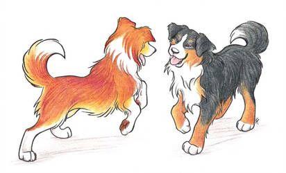 Puppy Romp By Wildspiritwolf Puppy Drawing Puppies Samoyed Puppy
