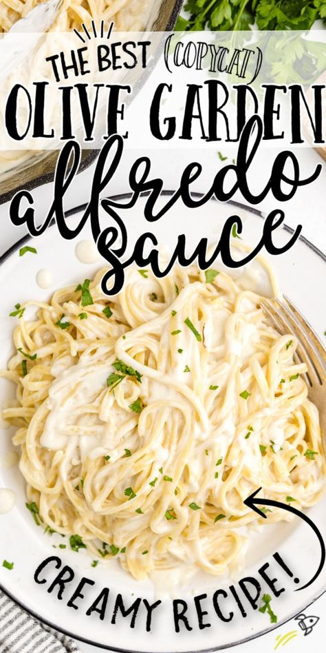 Olive Garden Alfredo Sauce is hands down one of the best pasta sauces out there. This copycat recipe is only 5 steps to make, and it tastes just like Olive Garden's delicious original recipe. It's creamy, cheesy, and super easy to make right from the comfort of home. Pasta Sauce Recipes, Easy Pasta Recipes, Pasta Sauces, Easy Meals, Cooking Recipes, Cheesy Pasta Sauce, Pasta Dishes, Chicken Recipes, Olive Garden Chicken Alfredo Recipe