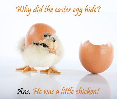 40 Funny Easter Jokes For Kids Friends Family Happy Easter 2019 Images Funny Easter Memes Easter Humor Funny Easter Jokes