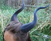 Classic Young Maleficent Inspired Horns Printed Dark Brown Horns comic-con from MudpiesandMajesty on Etsy.