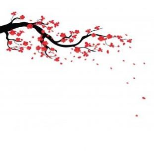 Best How To Draw A Tree Branch Cherry Blossoms 32 Ideas Tree Drawing Branch Drawing Japanese Cherry Tree