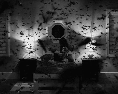 scary gif girl Black and White sad movie birds omg room bed wow bird butterfly bad angry scare scares butterflys