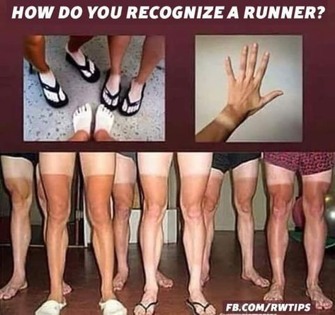 Runner Problems Hilarious Running – Famous Last Words Xc Running, Running Workouts, Running Tips, Fun Workouts, Track Workout, Sport Motivation, Fitness Motivation, Motivation Quotes, Fitness Quotes