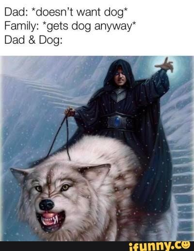 Dad Doesn T Want Dog Family Gets Dog Anyway Dad Dog Ifunny Dragon Memes Funny Pictures Dungeons And Dragons Memes