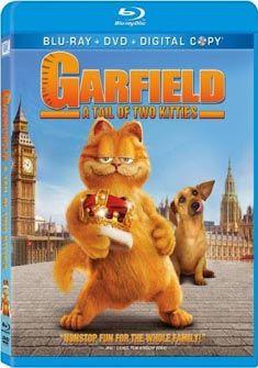 Garfield Movie Free Download 480p Bluray Garfield Movie Free Download Garfield Is Ahollywoodmovie Release On 11 June 2004 Garfield Mo Garfield Blu Ray Kitty