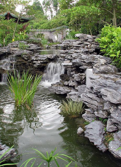 Lingnan Garden Lai Chi Kok Park Hong Kong Chi Garden Hong Kok Kong Lai Lingnan Park Pisci Water Features In The Garden Pond Water Features Garden Pool