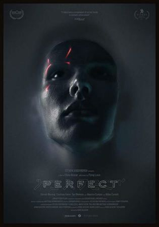 Perfect 2019 Hdrip 280mb English 480p With Images Perfect