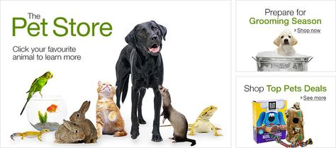 Save Money By Buying From Online Pet Shop For Your Dog Pets Pet Store Online Pet Store