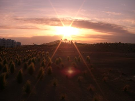Sunset at Terrazas de La Torre Golf Resort