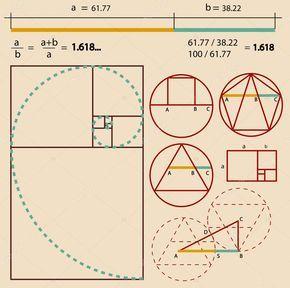 Descargue el vector de stock Proporción áurea sin royalties 14194753 de la  colección de millones de fotos, imágenes vectoria… | Golden ratio, Geometry  art, Geometry