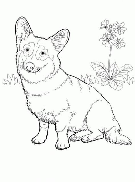 Doodle Dogs Coloring Book For Adults Happy Amanda Neel
