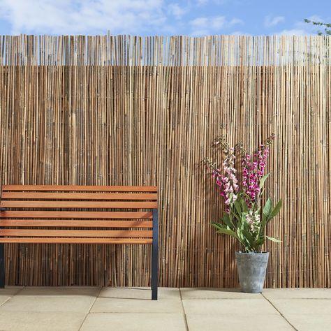 The 25+ best Bamboo screening ideas on Pinterest Bamboo garden - bambus garten design