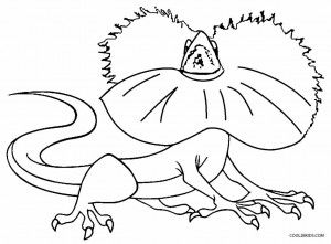 lizard coloring page # 57