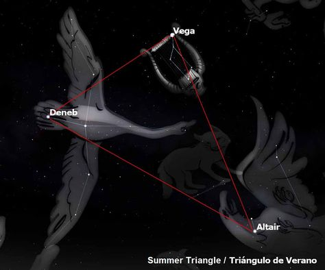 Deneb Vega Altair Summer Triangle Summer Triangle Sky